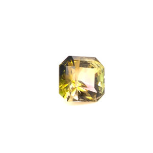 2.50ct Watermelon Tourmaline - Octagon