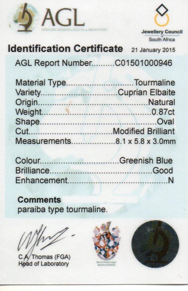 0.87ct Paraiba Tourmaline - Oval